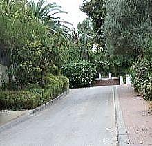 גדרות נוי